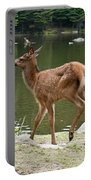 Elk Pictures 74 Portable Battery Charger