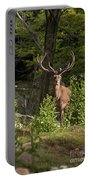 Elk Pictures 82 Portable Battery Charger