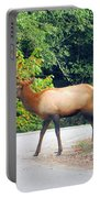 Elk Right Of Way Portable Battery Charger