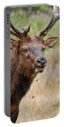 Elk Staring Portable Battery Charger