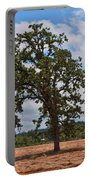 Elm Tree In Hay Field Art Prints Portable Battery Charger