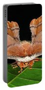 Emperor Gum Moth - 6 Inch Wing Span Portable Battery Charger