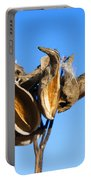 Empty Milkweed Pods Against Blue Sky Portable Battery Charger