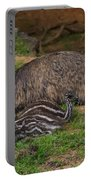 Emu And Chicks Portable Battery Charger