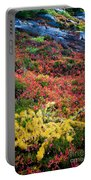 Enchanted Colors Portable Battery Charger