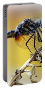 Enchanting Dragonfly Portable Battery Charger