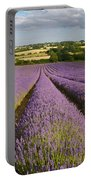 English Lavender Near Alton In Hampshire Portable Battery Charger