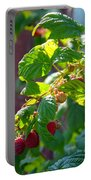 English Raspberries Portable Battery Charger