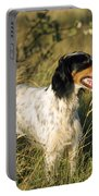 English Setter Dog Portable Battery Charger