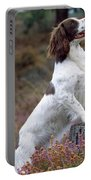 English Springer Spaniel Dog Portable Battery Charger