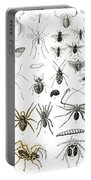 Entomology Myriapoda And Arachnida  Portable Battery Charger