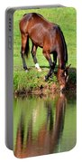 Equine Reflections Portable Battery Charger