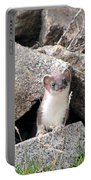 Ermine In Wildlife Portable Battery Charger