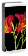 Erotic Red Flower Selection Romantic Lovely Valentine's Day Print Portable Battery Charger