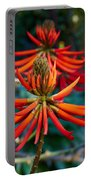 Erythrina Speciosa Portable Battery Charger
