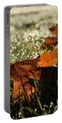Essence Of Autumn Portable Battery Charger