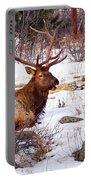 Estes Park Elk Portable Battery Charger
