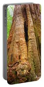Eucalyptus Tree Tasmania Portable Battery Charger