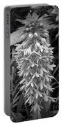 Eucomis Named Bicolor Portable Battery Charger