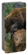 Eurasian Brown Bear 13 Portable Battery Charger