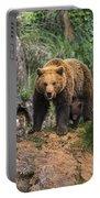 Eurasian Brown Bear 14 Portable Battery Charger