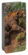 Eurasian Brown Bear 21 Portable Battery Charger