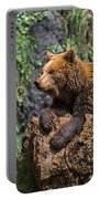 Eurasian Brown Bear 8 Portable Battery Charger