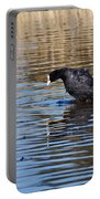 Eurasian Coot Portable Battery Charger