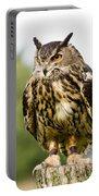 Eurasian Eagle Owl On Log Portable Battery Charger