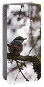 Eurasian Nuthatch Portable Battery Charger
