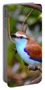 European Roller Portable Battery Charger