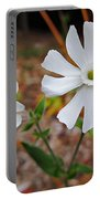Evening Lychnis Portable Battery Charger