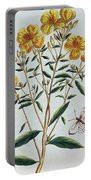 Evening Primrose Portable Battery Charger