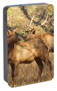 Evening Sets On The Elk Portable Battery Charger