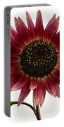 Evening Sun Sunflower 2 Portable Battery Charger
