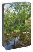 Everglades Lake Portable Battery Charger