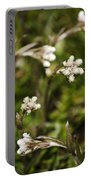 Everlasting Portable Battery Charger by Christina Rollo
