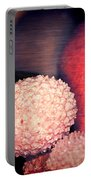 Exotique 2 Portable Battery Charger
