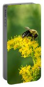 Exploring Goldenrod 2 Portable Battery Charger