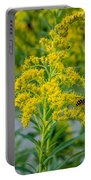 Exploring Goldenrod 3 Portable Battery Charger