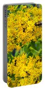 Exploring Goldenrod 5 Portable Battery Charger