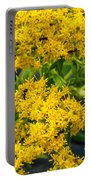 Exploring Goldenrod 6 Portable Battery Charger