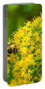 Exploring Goldenrod Portable Battery Charger