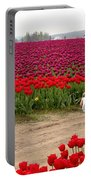 Exploring The Tulip Fields Portable Battery Charger
