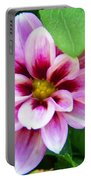 Exquisite Portable Battery Charger by Aimee L Maher Photography and Art Visit ALMGallerydotcom