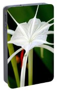 Exquisite Spider Lily Portable Battery Charger