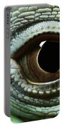 Eye Of A Common Iguana Iguana Iguana Portable Battery Charger