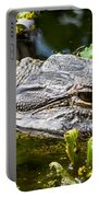 Eye Of The Alligator Portable Battery Charger