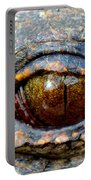 Eye Of The Dragon Portable Battery Charger