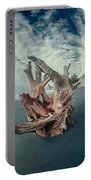 Eye Of The Driftwood Portable Battery Charger